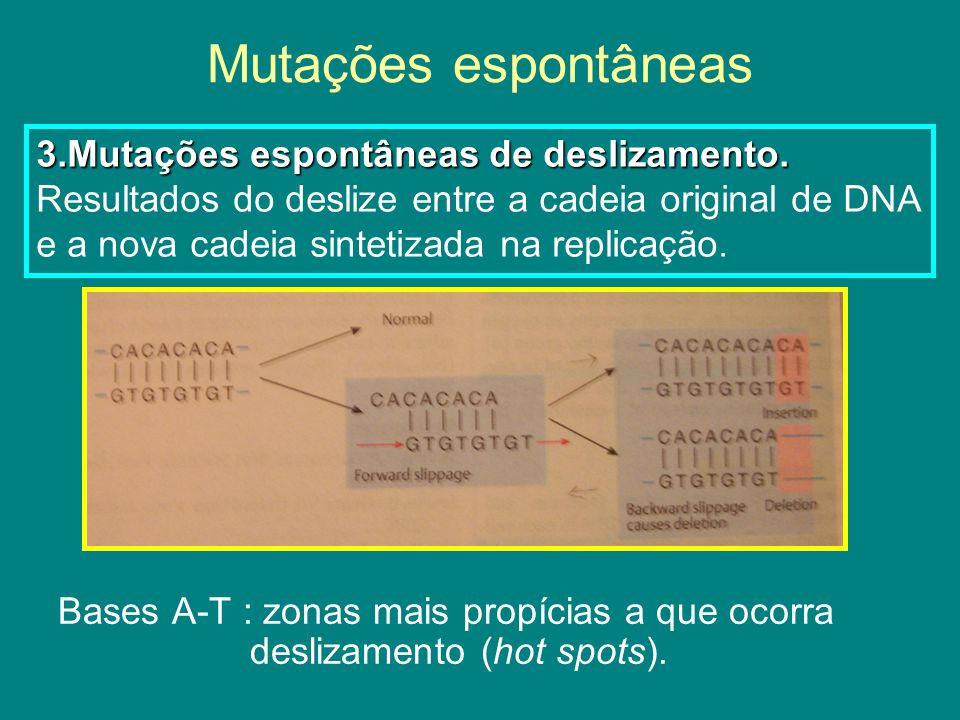 Mutações induzidas Os agentes mutagénicos podem ser divididos em 6 tipos: 1.