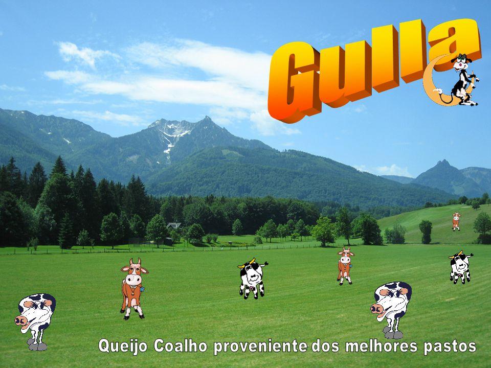 Estratégia de Marketing Objectivos Satisfação dos clientes Tornar o queijo coalho um hábito dos consumidores portugueses.