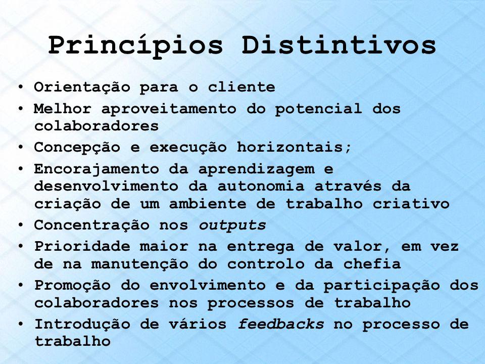 Princípios Distintivos Orientação para o cliente Melhor aproveitamento do potencial dos colaboradores Concepção e execução horizontais; Encorajamento