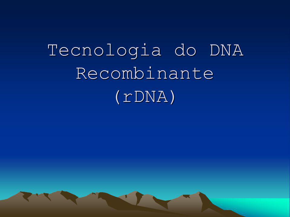 Tecnologia do DNA Recombinante (rDNA)