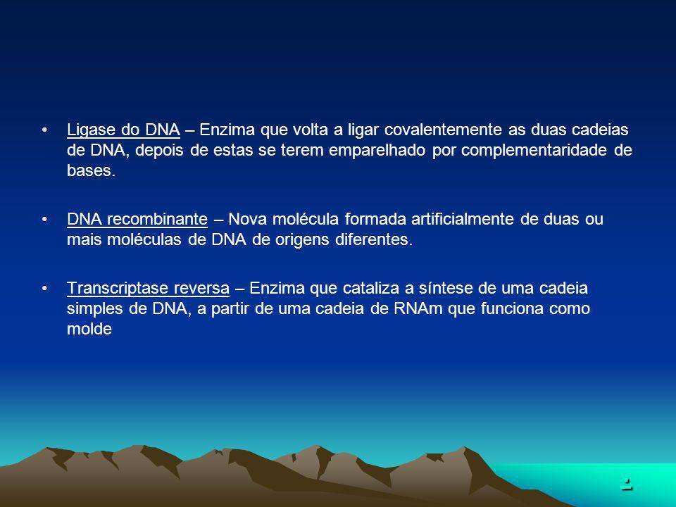.... Ligase do DNA – Enzima que volta a ligar covalentemente as duas cadeias de DNA, depois de estas se terem emparelhado por complementaridade de bas