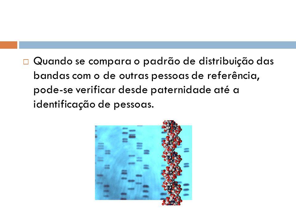 Quando se compara o padrão de distribuição das bandas com o de outras pessoas de referência, pode-se verificar desde paternidade até a identificação d
