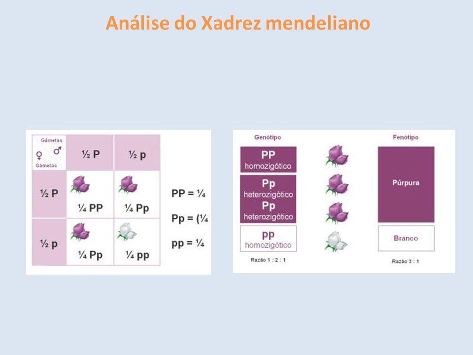Análise do Xadrez mendeliano