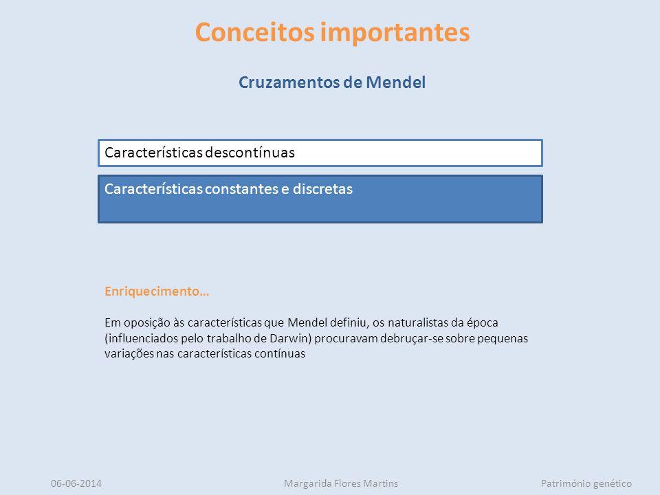 06-06-2014Margarida Flores MartinsPatrimónio genético Conceitos importantes Cruzamentos de Mendel Características descontínuas Características constan