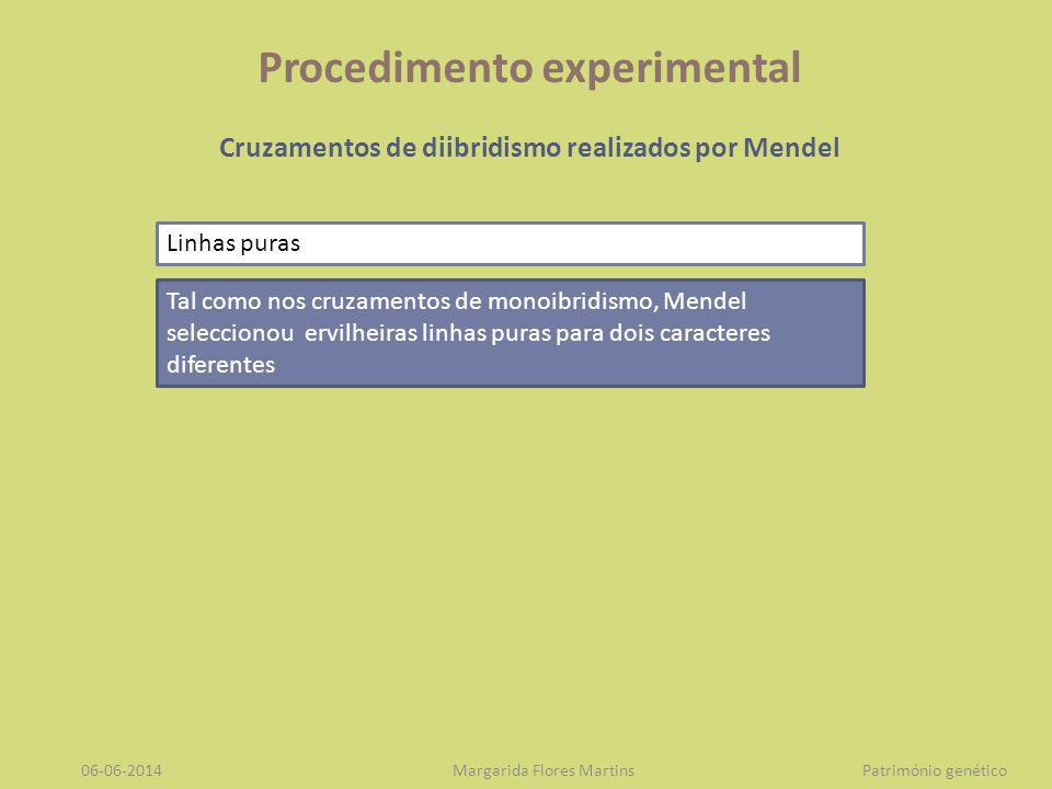 Procedimento experimental Cruzamentos de diibridismo realizados por Mendel Seguidamente, cruzou artificialmente estas plantas portadoras de dois caracteres antagónicos.