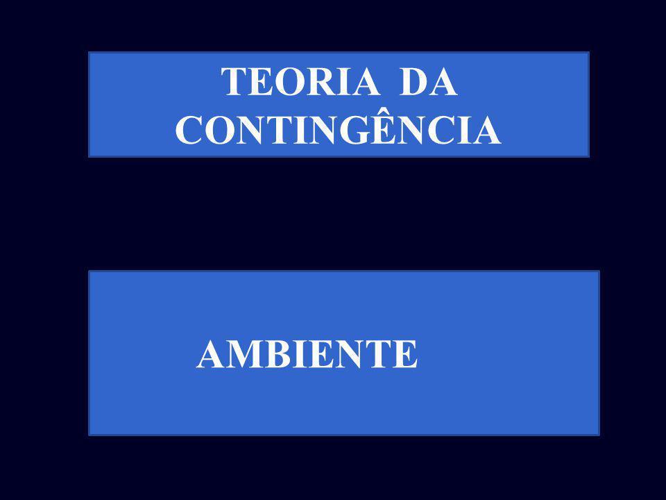 AMBIENTE TEORIA DA CONTINGÊNCIA