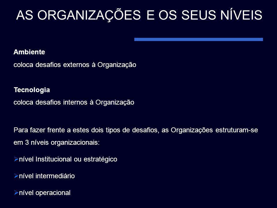 Ambiente coloca desafios externos à Organização Tecnologia coloca desafios internos à Organização Para fazer frente a estes dois tipos de desafios, as