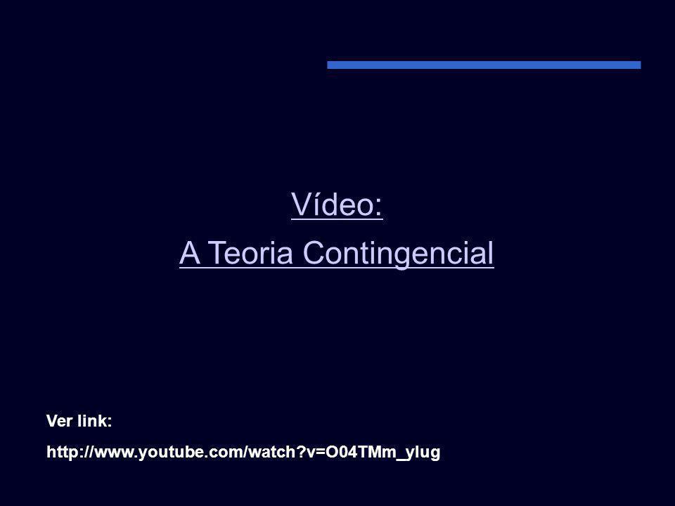 Vídeo: A Teoria Contingencial Ver link: http://www.youtube.com/watch?v=O04TMm_ylug