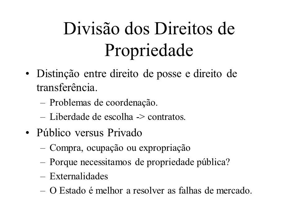Divisão dos Direitos de Propriedade Distinção entre direito de posse e direito de transferência. –Problemas de coordenação. –Liberdade de escolha -> c
