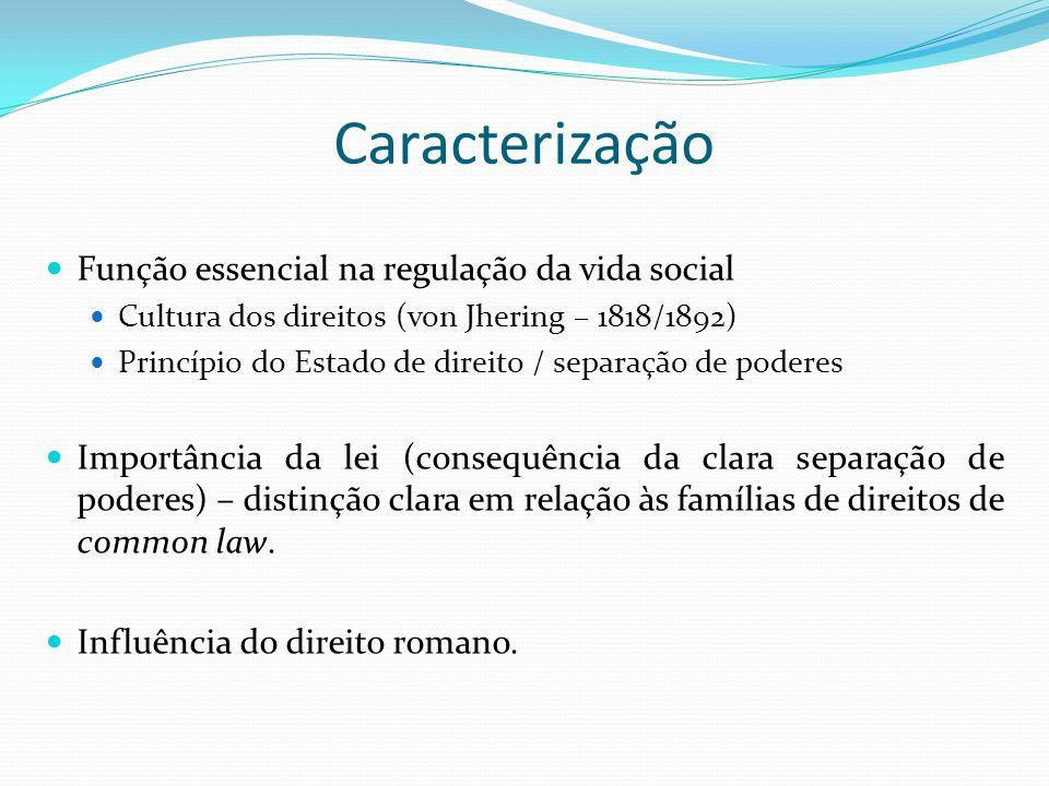 Caracterização Função essencial na regulação da vida social Cultura dos direitos (von Jhering – 1818/1892) Princípio do Estado de direito / separação