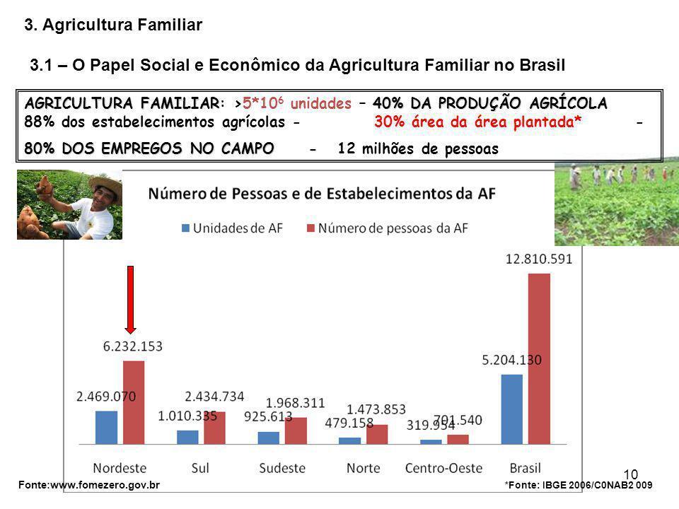 Prof. João Nildo Vianna10 3.1 – O Papel Social e Econômico da Agricultura Familiar no Brasil *Fonte: IBGE 2006/C0NAB2 009 Fonte:www.fomezero.gov.br AG