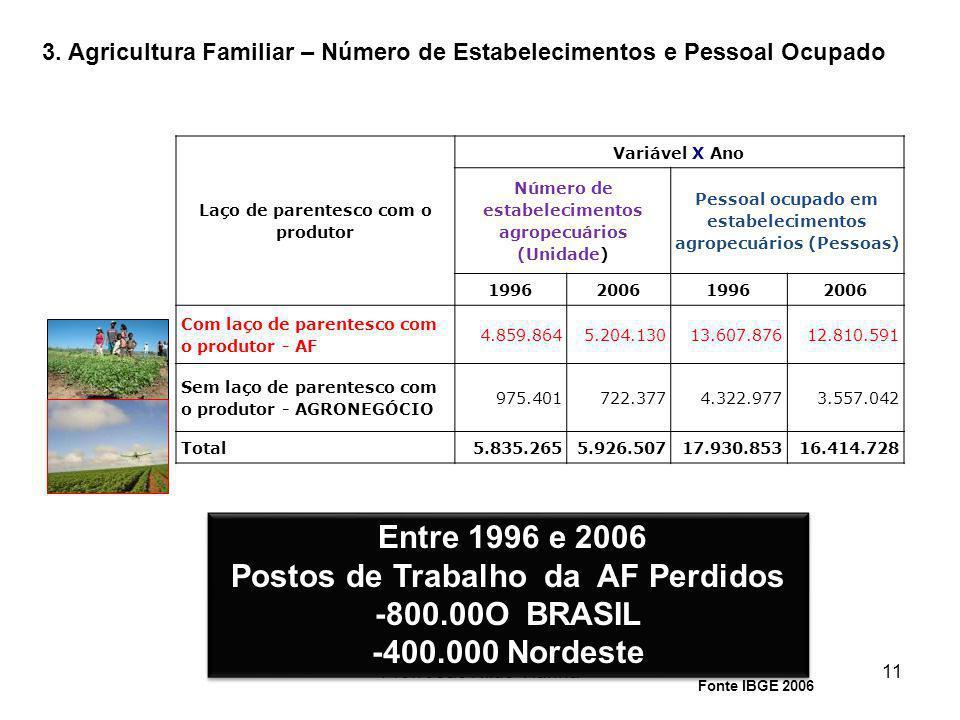 Prof. João Nildo Vianna11 Laço de parentesco com o produtor Variável X Ano Número de estabelecimentos agropecuários (Unidade) Pessoal ocupado em estab