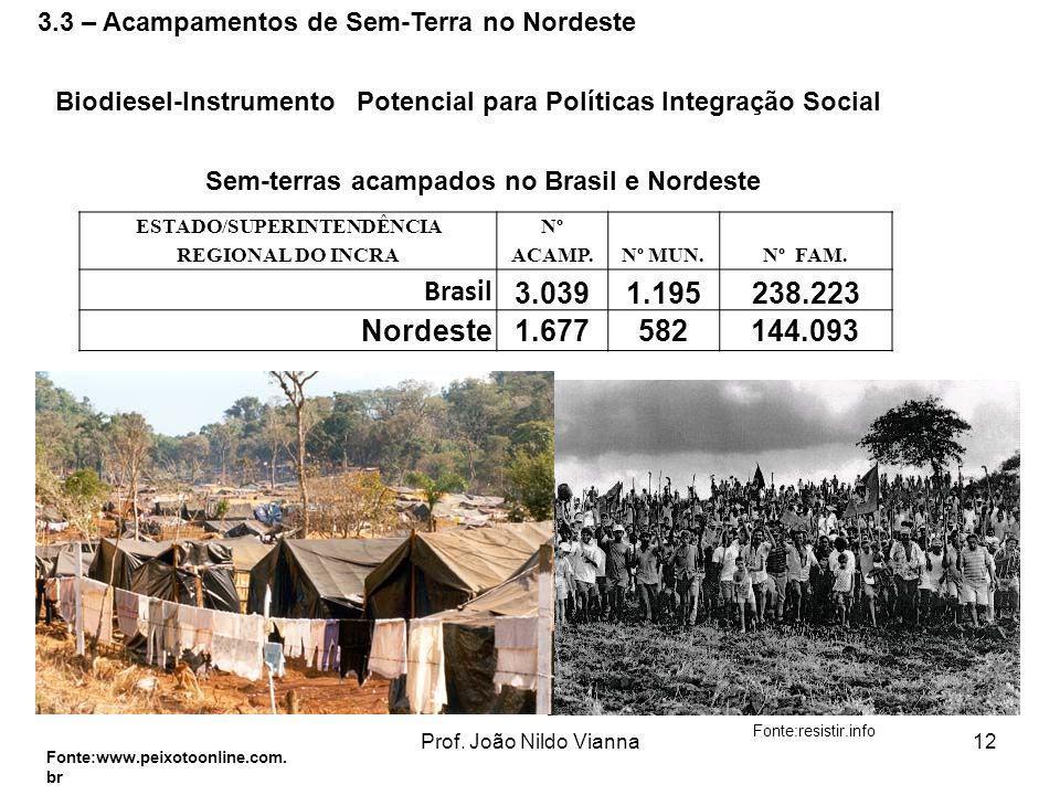 Prof. João Nildo Vianna12 ESTADO/SUPERINTENDÊNCIA REGIONAL DO INCRA Nº ACAMP.Nº MUN.Nº FAM. Brasil 3.0391.195238.223 Nordeste1.677582144.093 Sem-terra