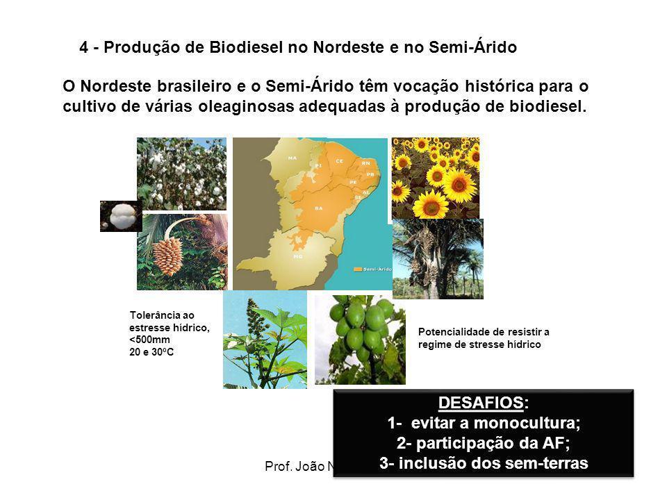 Prof. João Nildo Vianna14 4 - Produção de Biodiesel no Nordeste e no Semi-Árido O Nordeste brasileiro e o Semi-Árido têm vocação histórica para o cult