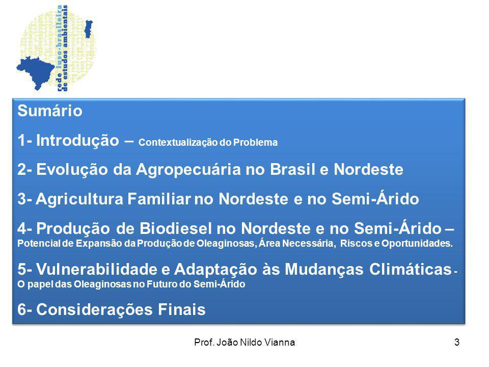 Prof. João Nildo Vianna3 Sumário 1- Introdução – Contextualização do Problema 2- Evolução da Agropecuária no Brasil e Nordeste 3- Agricultura Familiar