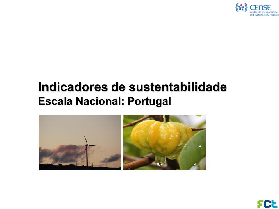 Indicadores de sustentabilidade Escala Regional: Algarve Algarve foi a primeira região Portuguesa a implementar um sistema de indicadores de desenvolvimento sustentável (SIDS Algarve), sendo o caso regional mais consolidado; Utilizou uma abordagem colaborativa, envolvendo um conjunto alargado de diferentes partes interessadas (e.g.
