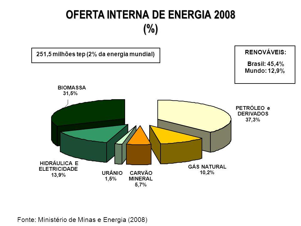 OFERTA INTERNA DE ENERGIA (%) 45,6 37,3 10,2 6,1 13,9 44,8 31,5 0,4 5,7 3,1 0,0 1,5 0% 20% 40% 60% 80% 100% 19732008 BIOMASSA HIDRÁULICA E ELETRICIDADE URÂNIO CARVÃO MINERAL GÁS NATURAL PETRÓLEO e DERIVADOS Fonte: Ministério de Minas e Energia (2008)