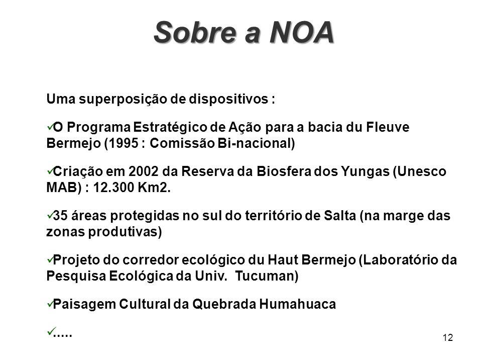 12 Sobre a NOA Sobre a NOA Uma superposição de dispositivos : O Programa Estratégico de Ação para a bacia du Fleuve Bermejo (1995 : Comissão Bi-nacion