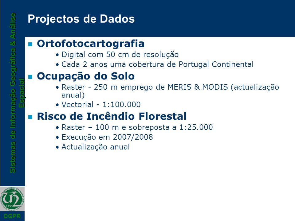 Sistemas de Informação Geográfica & Análise Espacial DGPR n Ortofotocartografia Digital com 50 cm de resolução Cada 2 anos uma cobertura de Portugal C