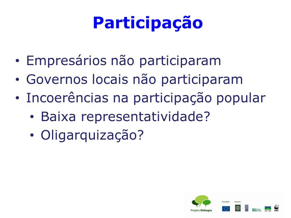 Participação Empresários não participaram Governos locais não participaram Incoerências na participação popular Baixa representatividade.