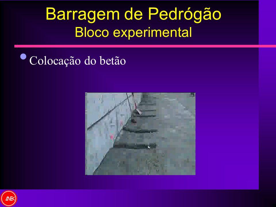 Colocação do betão Barragem de Pedrógão Bloco experimental