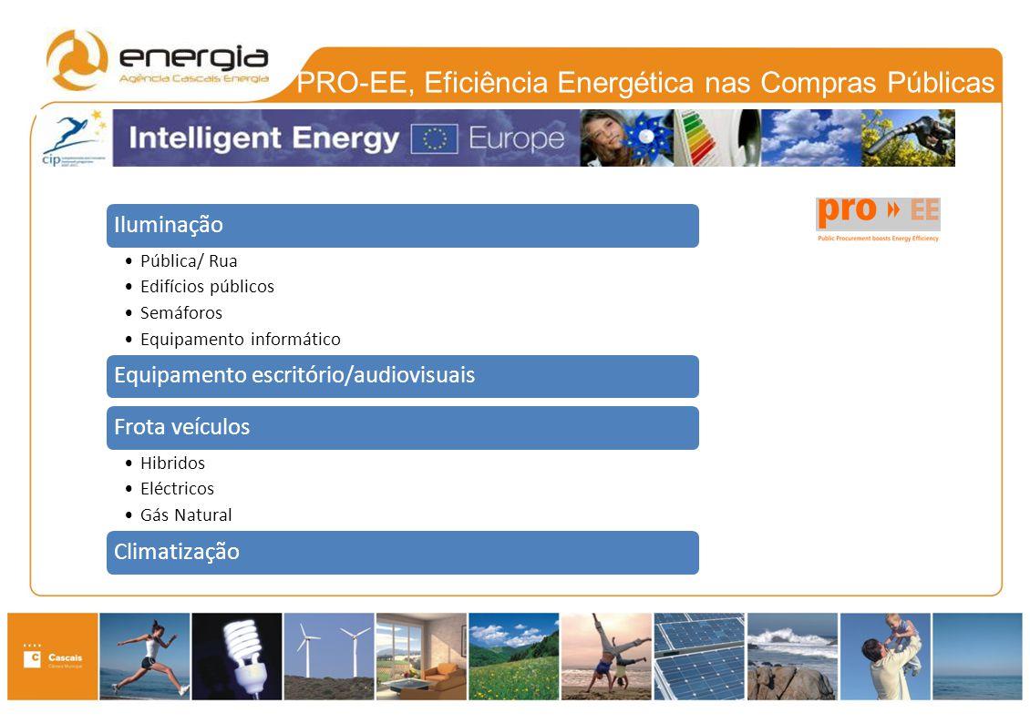 PRO-EE, Eficiência Energética nas Compras Públicas Iluminação Pública/ Rua Edifícios públicos Semáforos Equipamento informático Equipamento escritório