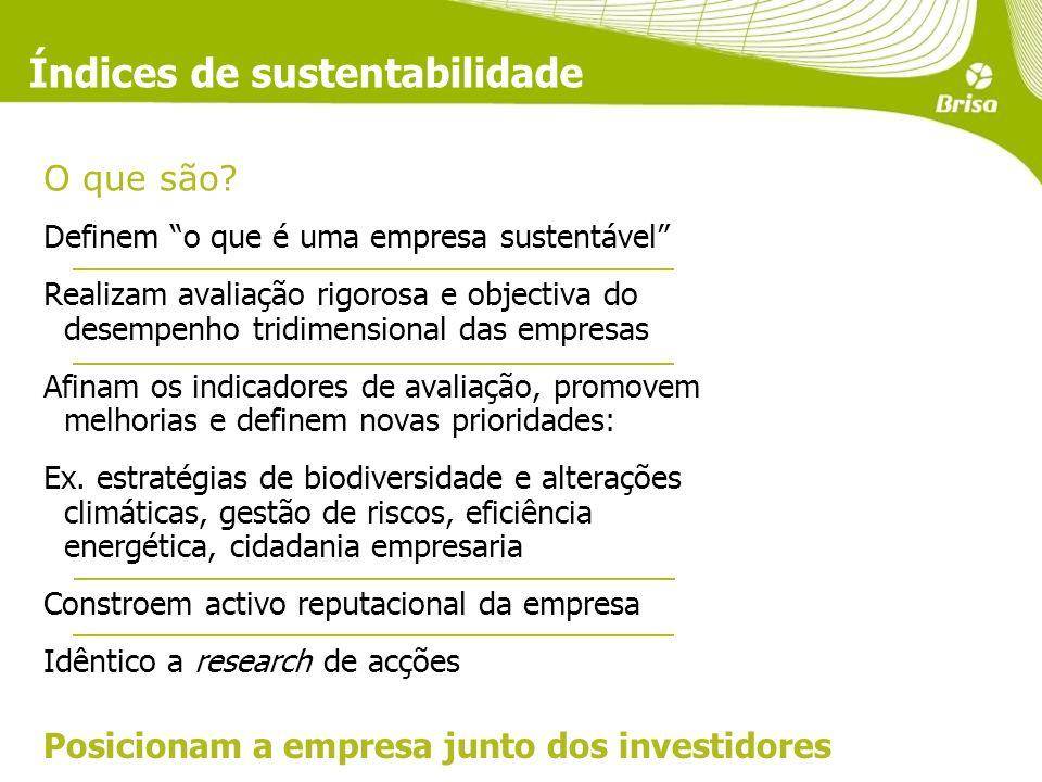 Índices de sustentabilidade O que são.