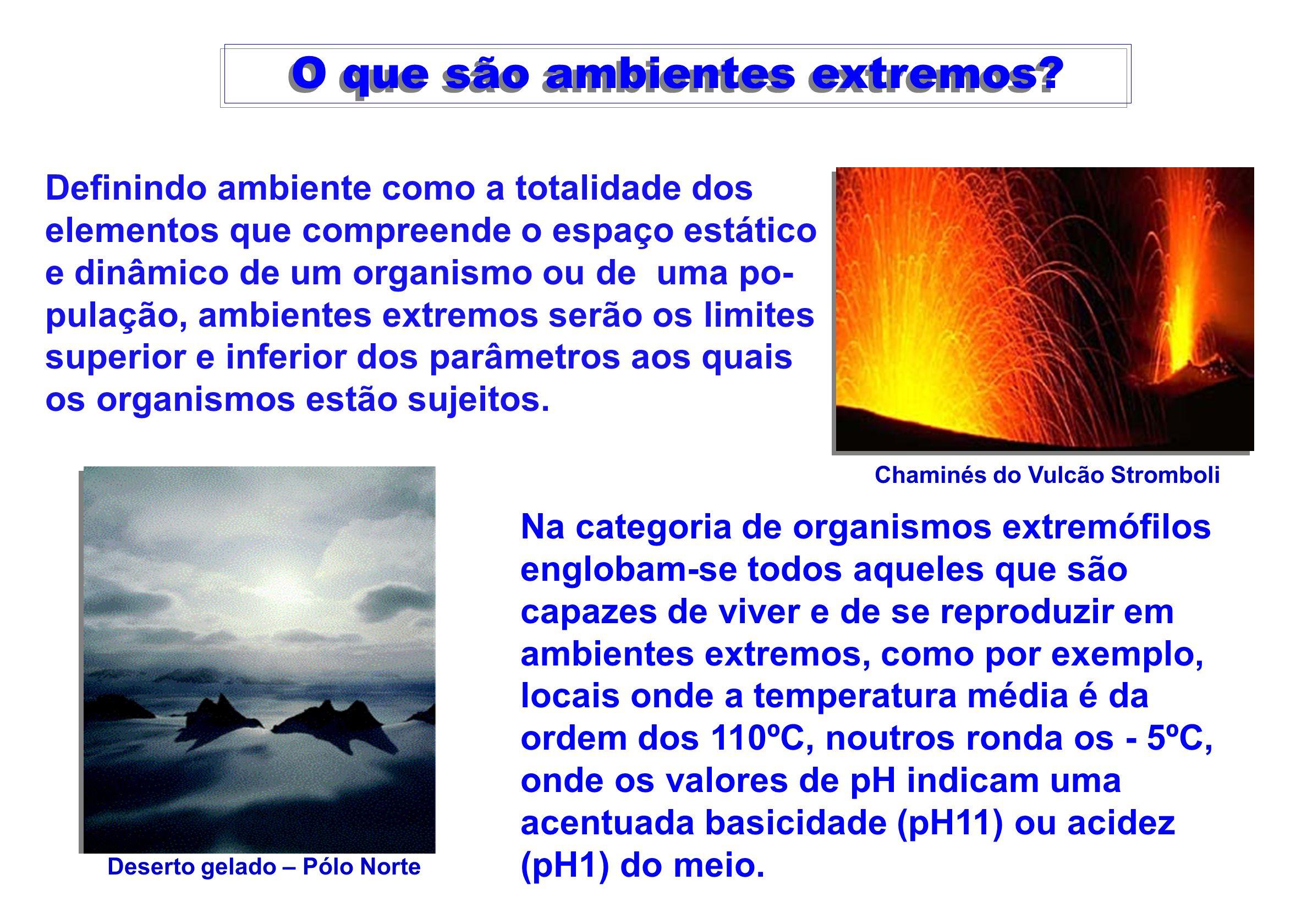 O que são ambientes extremos? Definindo ambiente como a totalidade dos elementos que compreende o espaço estático e dinâmico de um organismo ou de uma