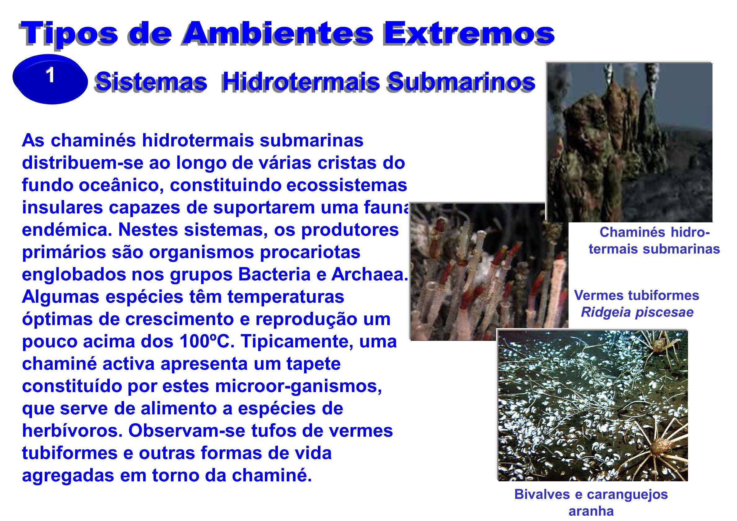 Sistemas Hidrotermais Submarinos As chaminés hidrotermais submarinas distribuem-se ao longo de várias cristas do fundo oceânico, constituindo ecossistemas insulares capazes de suportarem uma fauna endémica.