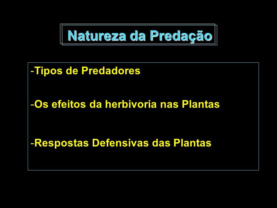 Natureza da Predação -Tipos de Predadores -Os efeitos da herbivoria nas Plantas -Respostas Defensivas das Plantas