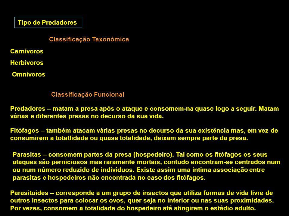 Tipo de Predadores Classificação Taxonómica Classificação Funcional Carnívoros Herbívoros Omnívoros Predadores – matam a presa após o ataque e consome