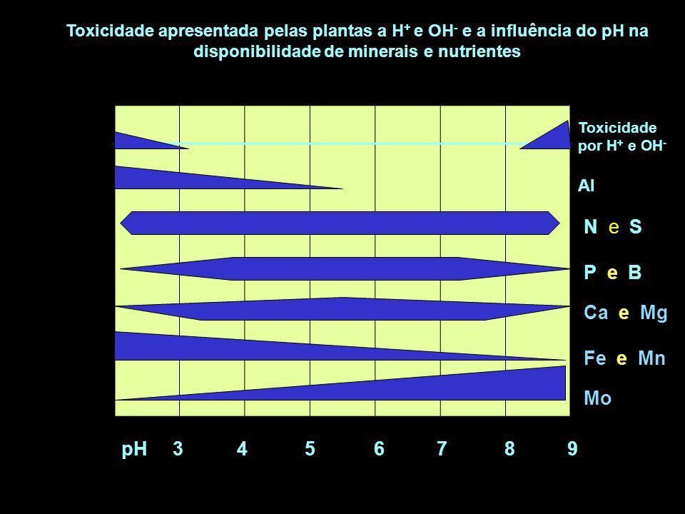 Toxicidade por H + e OH - Al N e S P e B Ca e Mg Fe e Mn Mo pH 3 4 5 6 7 8 9 Toxicidade apresentada pelas plantas a H + e OH - e a influência do pH na