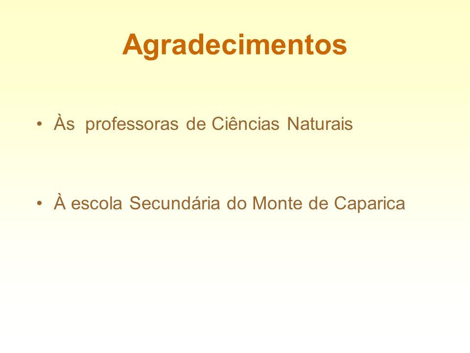 Agradecimentos Às professoras de Ciências Naturais À escola Secundária do Monte de Caparica