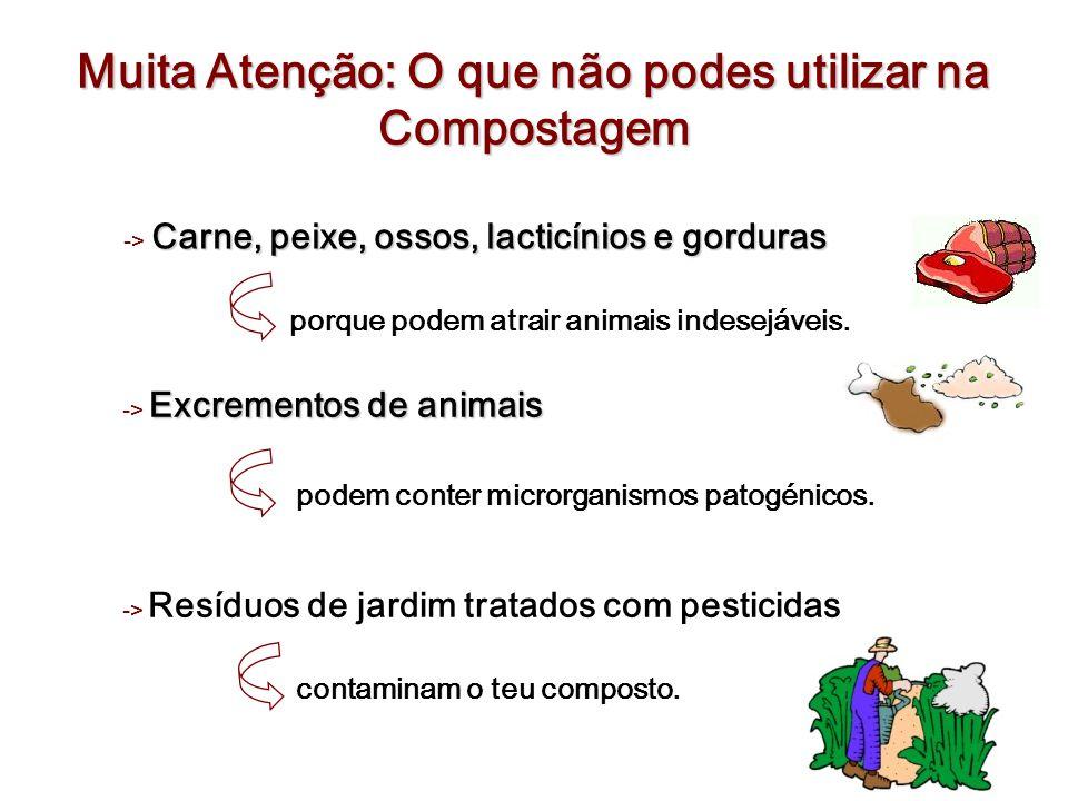 Muita Atenção: O que não podes utilizar na Compostagem Excrementos de animais -> Excrementos de animais podem conter microrganismos patogénicos. -> Re