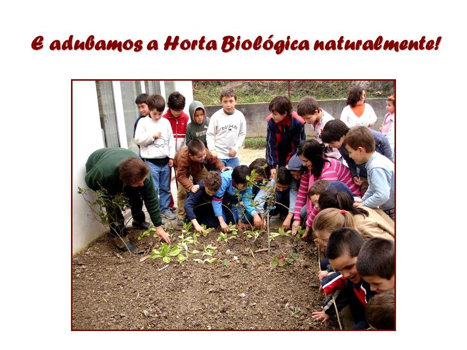 E adubamos a Horta Biológica naturalmente!