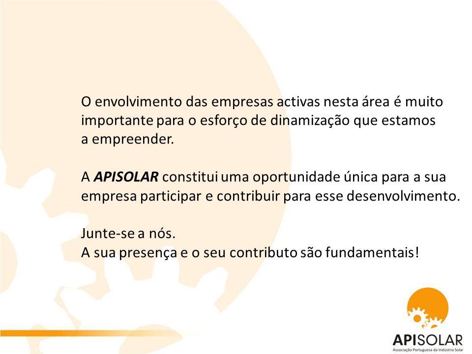 O envolvimento das empresas activas nesta área é muito importante para o esforço de dinamização que estamos a empreender.