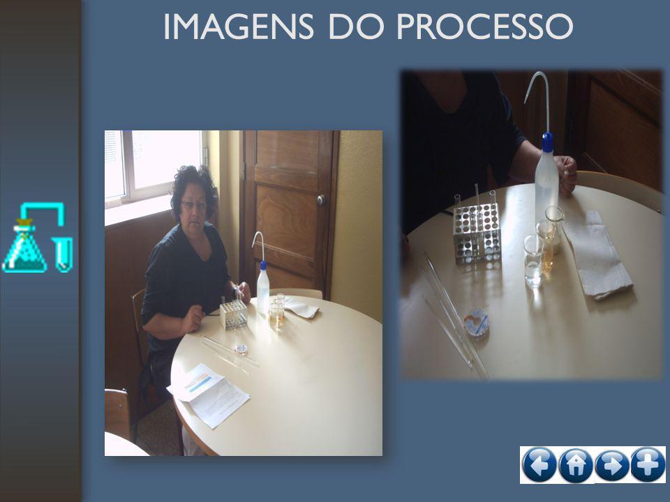 IMAGENS DO PROCESSO