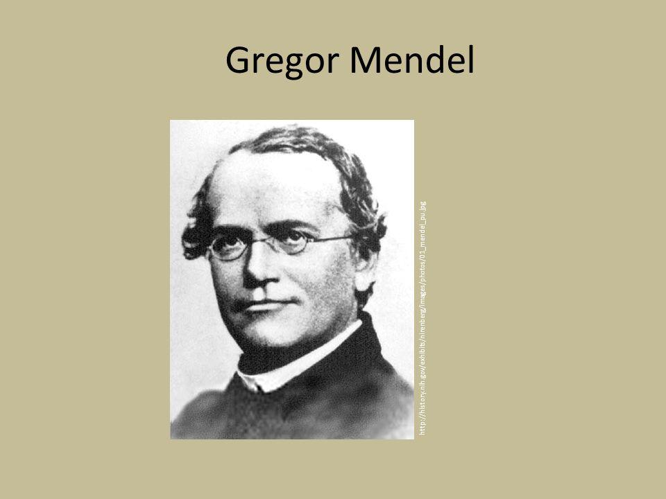 http://history.nih.gov/exhibits/nirenberg/images/photos/01_mendel_pu.jpg Gregor Mendel