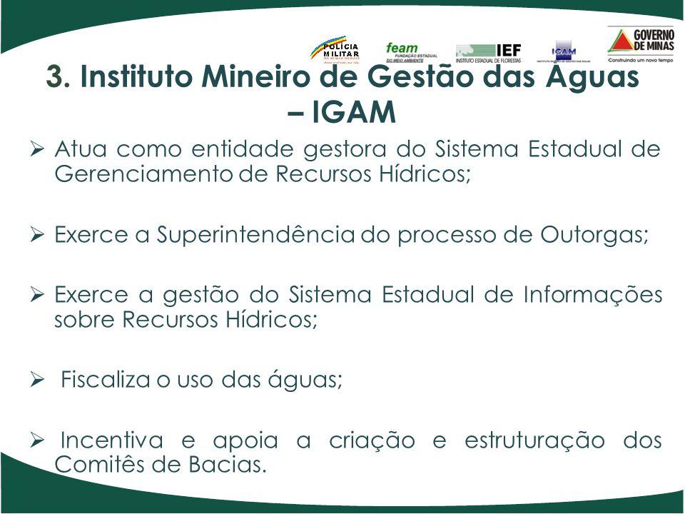 3. Instituto Mineiro de Gestão das Águas – IGAM Atua como entidade gestora do Sistema Estadual de Gerenciamento de Recursos Hídricos; Exerce a Superin
