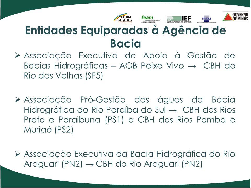 Entidades Equiparadas à Agência de Bacia Associação Executiva de Apoio à Gestão de Bacias Hidrográficas – AGB Peixe Vivo CBH do Rio das Velhas (SF5) A