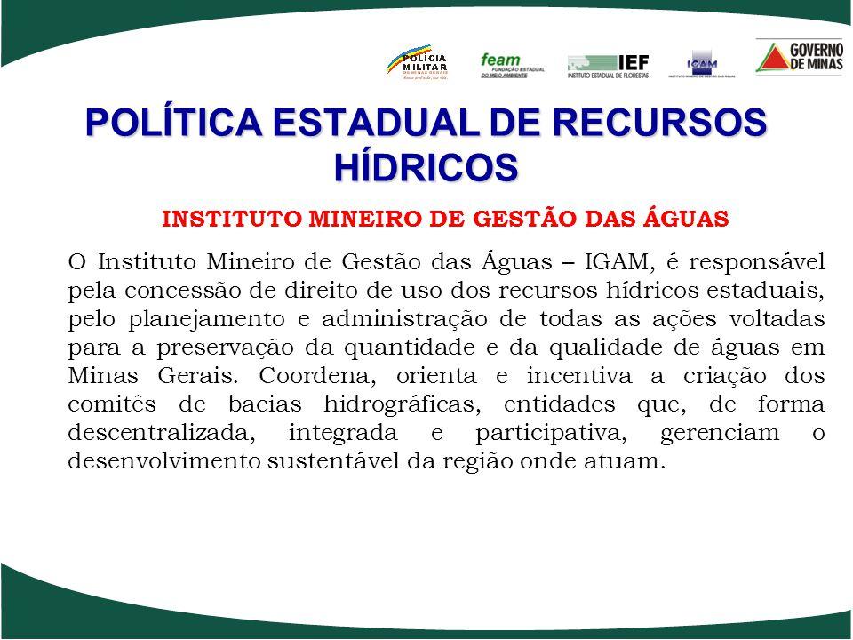 POLÍTICA ESTADUAL DE RECURSOS HÍDRICOS INSTITUTO MINEIRO DE GESTÃO DAS ÁGUAS O Instituto Mineiro de Gestão das Águas – IGAM, é responsável pela conces