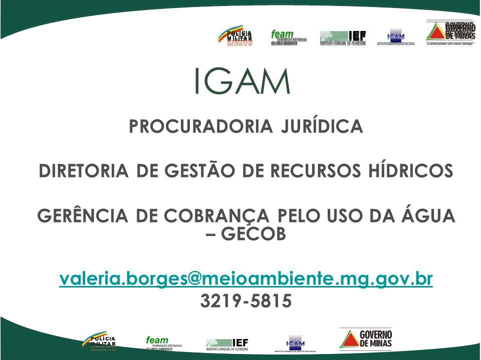 IGAM PROCURADORIA JURÍDICA DIRETORIA DE GESTÃO DE RECURSOS HÍDRICOS GERÊNCIA DE COBRANÇA PELO USO DA ÁGUA – GECOB valeria.borges@meioambiente.mg.gov.b
