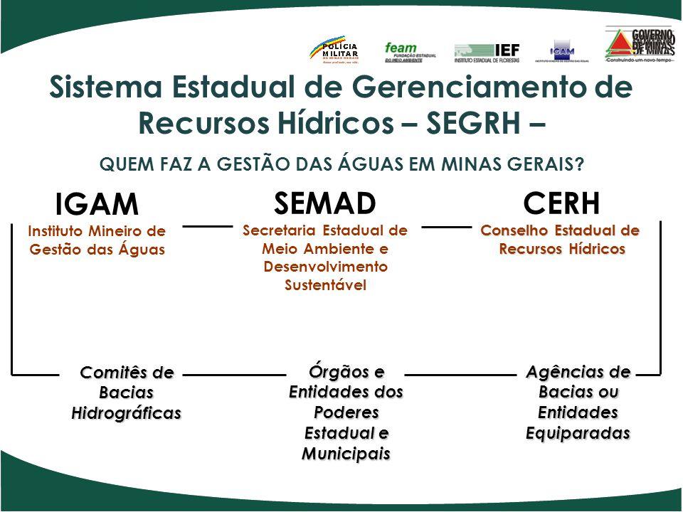 SEMAD Secretaria Estadual de Meio Ambiente e Desenvolvimento Sustentável CERH Conselho Estadual de Recursos Hídricos IGAM Instituto Mineiro de Gestão