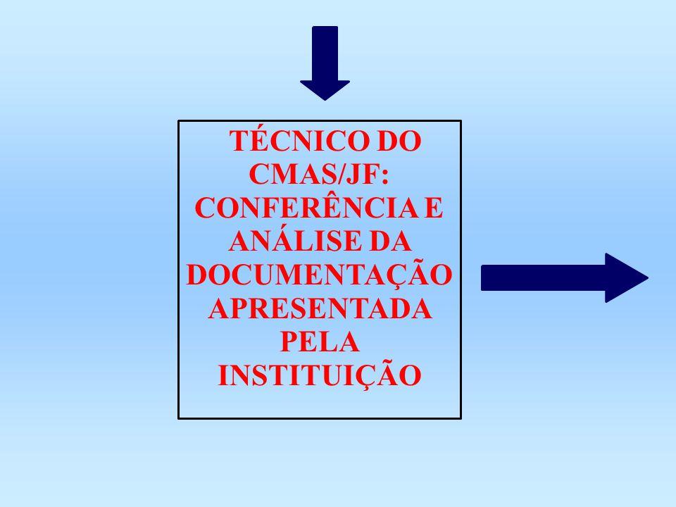 TÉCNICO DO CMAS/JF: CONFERÊNCIA E ANÁLISE DA DOCUMENTAÇÃO APRESENTADA PELA INSTITUIÇÃO