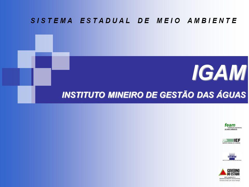 POLÍTICA ESTADUAL DE RECURSOS HÍDRICOS Nas regiões do Norte, Noroeste e Jequitinhonha de Minas Gerais, onde os recursos hídricos são extremamente escassos, os procedimentos para a Regularização Ambiental (no nosso caso a Outorga) assumem uma maior importância.