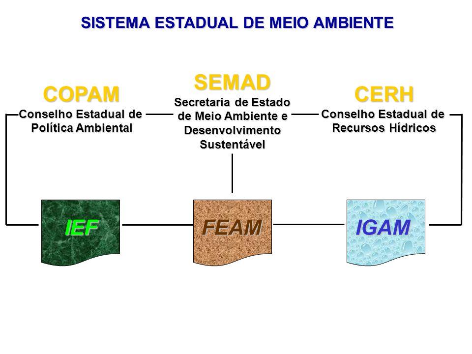 SEMAD Secretaria de Estado de Meio Ambiente e DesenvolvimentoSustentável CERH Conselho Estadual de Recursos Hídricos COPAM Conselho Estadual de Política Ambiental IGAMFEAMIEF SISTEMA ESTADUAL DE MEIO AMBIENTE