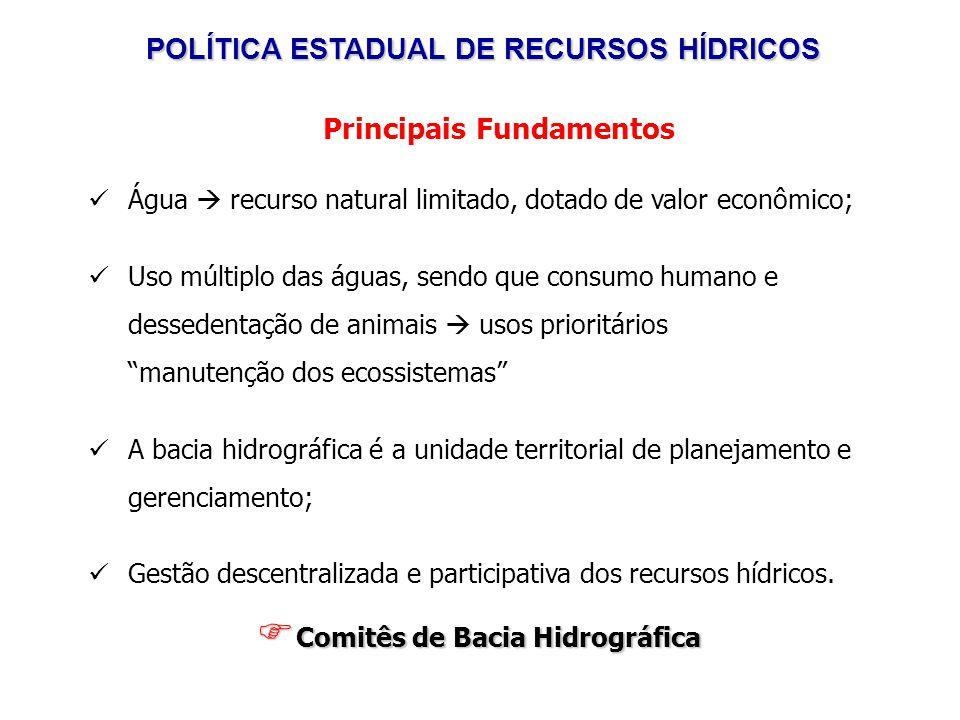 POLÍTICA ESTADUAL DE RECURSOS HÍDRICOS Portaria IGAM n.º 15, de 20 de junho de 2007: Art.