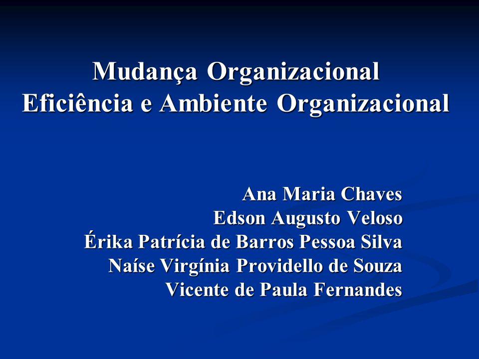 Mudança Organizacional Eficiência e Ambiente Organizacional Ana Maria Chaves Edson Augusto Veloso Érika Patrícia de Barros Pessoa Silva Naíse Virgínia