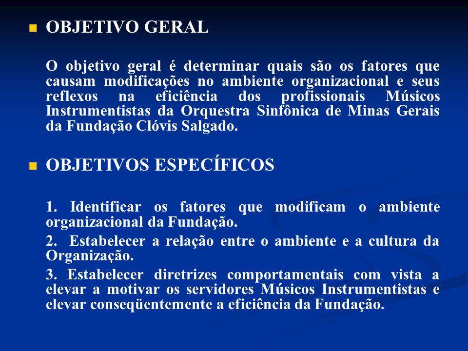 OBJETIVO GERAL O objetivo geral é determinar quais são os fatores que causam modificações no ambiente organizacional e seus reflexos na eficiência dos