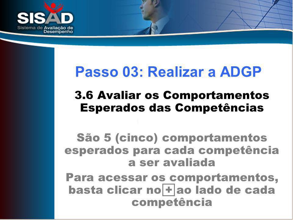 3.6 Avaliar os Comportamentos Esperados das Competências São 5 (cinco) comportamentos esperados para cada competência a ser avaliada Para acessar os comportamentos, basta clicar no + ao lado de cada competência Passo 03: Realizar a ADGP